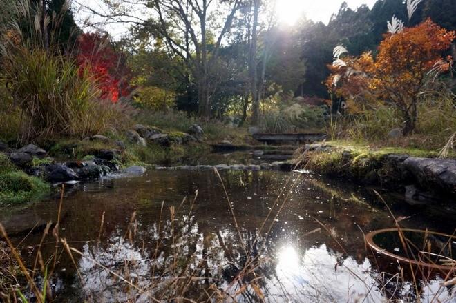 couleur automne workaway japon