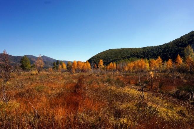 paysage automne lac lugu sichuan chine