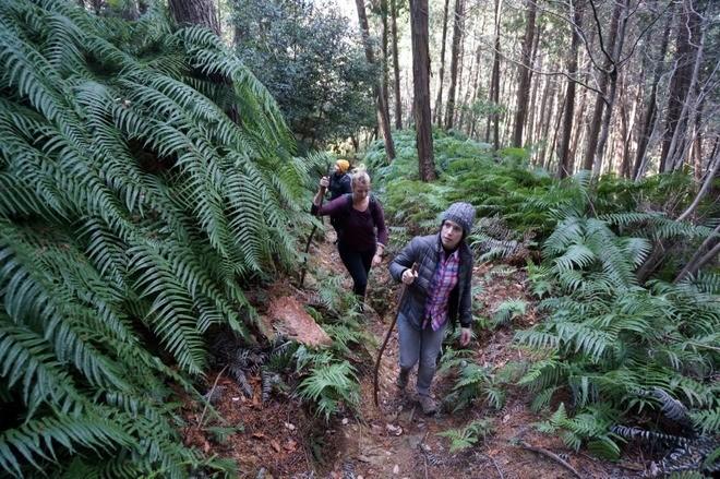 trek montagne shosha volontariat japon
