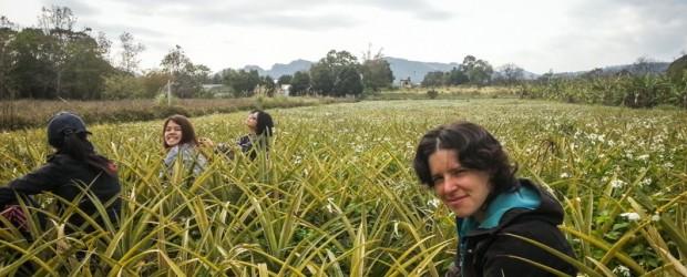 Ce bénévolat à Taïwan vous ressourcera par sa simplicité et son authenticité