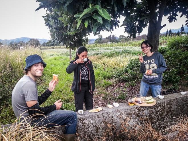 pause thé dans volontariat taiwan
