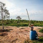 aline prépare engrais ferme malaisie