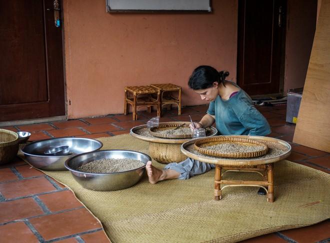 aline trie le poivre de kampot a la main