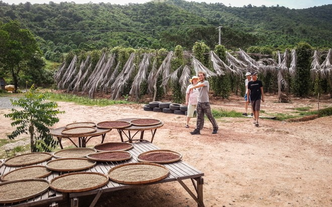 volontariat cambodge tourisme poivre de kampot