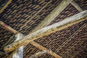 toit feuille de cocotier workaway vietnam